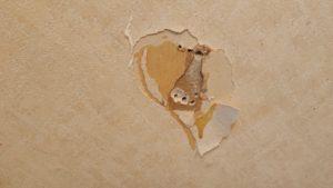 タオル掛けが取れ壁に穴が開いた!800円で修理する方法とは?